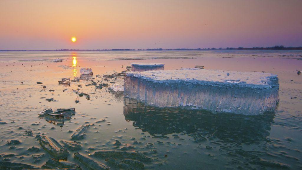 Danube Delta Winter Landscape